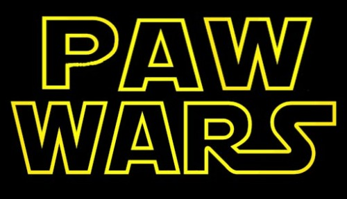 PAW WARS