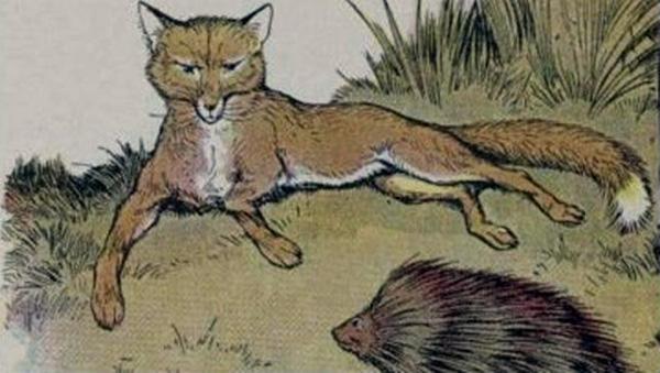 Hedgehog and fox essay