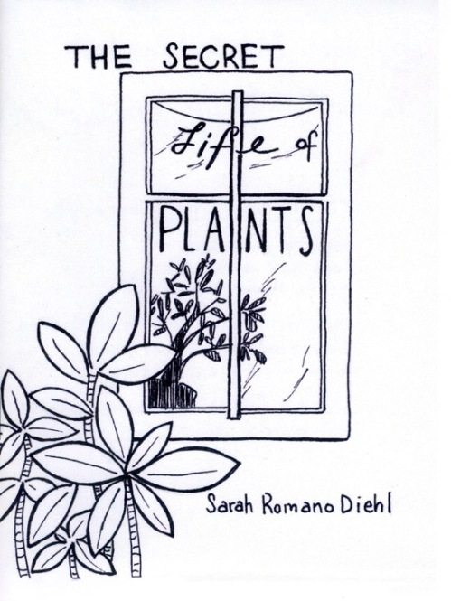 """The Secret Life of Plants,"" by Sarah Romano Diehl"