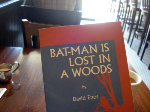 """Bat-Man Is Lost In A Woods"" by David Enos"