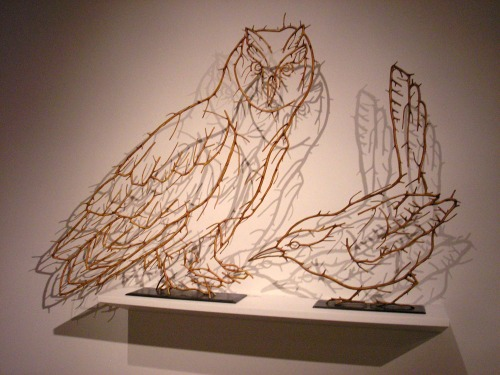 Birds formed out of Alder Wood